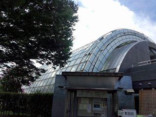 三橋2.jpg