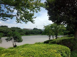 三橋3.jpg